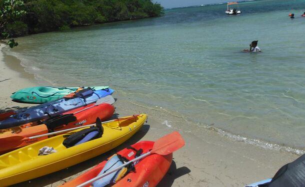 Balade en kayak à l'ilet Chancel, l'île des iguanes