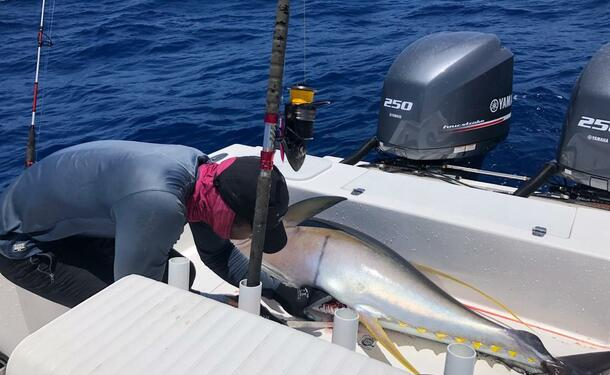 Initiation à la pêche, entre passion et découverte