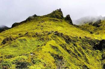Ascension vers le cratère de la Montagne Pelée