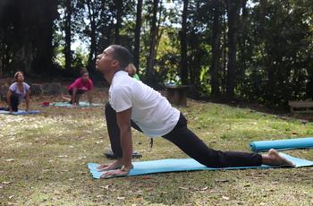Yoga dynamique en plein air