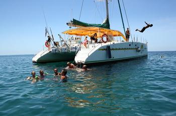Catamaran et dauphin pour une demi journée tip top
