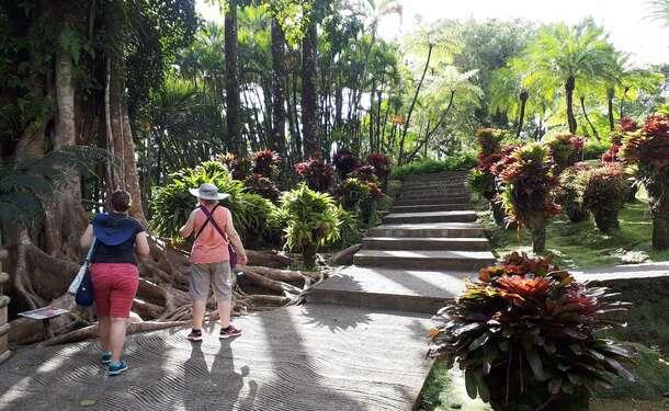 Jardin de Balata & Saint-Pierre, entre histoire et flore locale