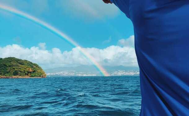 Observation des mammifères marins et découverte du littoral
