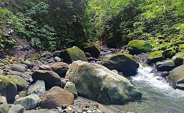 Escapade rafraîchissante à la Cascade Dany